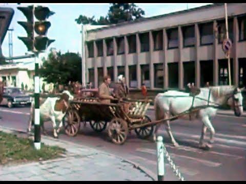 Filmas apie Alytų sovietmečiu || 400 METŲ jaunuolis (1981)