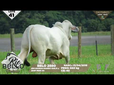LOTE 41   BELO 2880