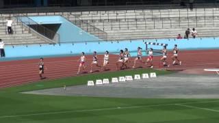 第10回かわさき陸上競技フェスティバル 招待男子800m第2組(2011/10/29)