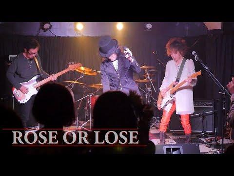 【 THE ALUCARD 】ROSE OR LOSE【 The Willard 】