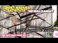 Cendet Batistuta Milik Pak Ian Finza Latpres Bongkar Bc Feat Bnr Sultan Akbar  Mp3 - Mp4 Download