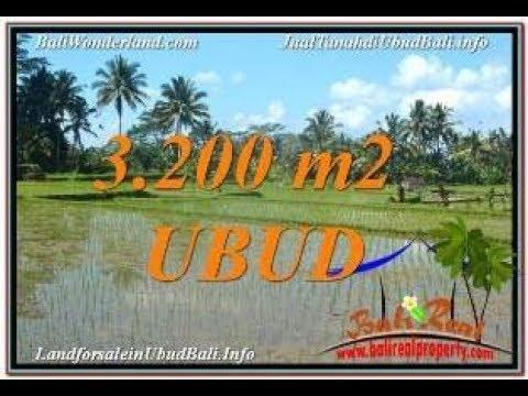LAND IN UBUD BALI FOR SALE TJUB628