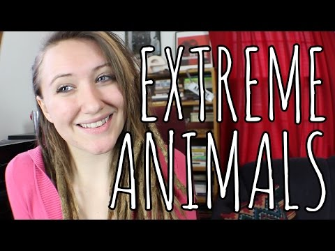 Most Extreme Organisms