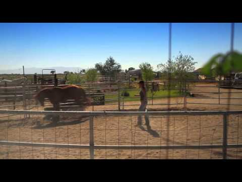 Visit Fallon Nevada