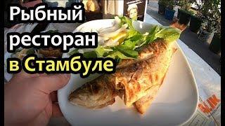 Рыбный ресторан в Стамбуле без туристов 🐟 Шикарные морепродукты! Закат в Стамбуле и кусачая чайка!!!