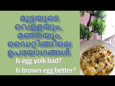 Egg white vs Whole Eggs in Malayalam | മുട്ടയുടെ വെള്ളയും മഞ്ഞയും ഡൈറ്റിങ്ങിലെ ഉപയോഗങ്ങൾ