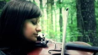 Violin Curly  -