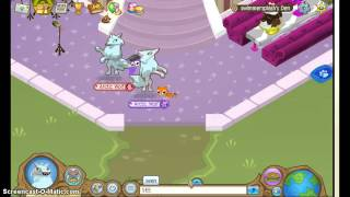 Animal Jam TWO Secret Colors
