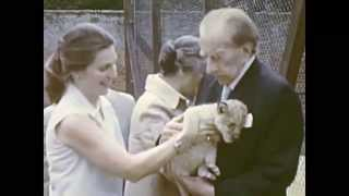 J. Paul Getty with Lions