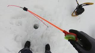 Рыбалка в Эвенкии.Отличный клёв.. (4..