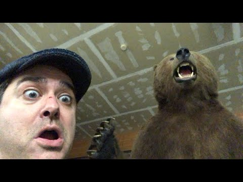 Live From Kodiak! Cy's Sporting Goods, Kodiak Bears, Fishing!