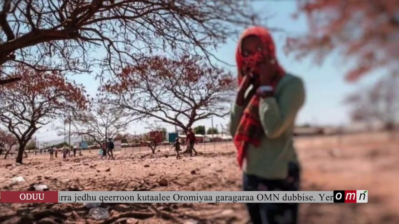 Download OMN:Oduu (Gur 12,2021)