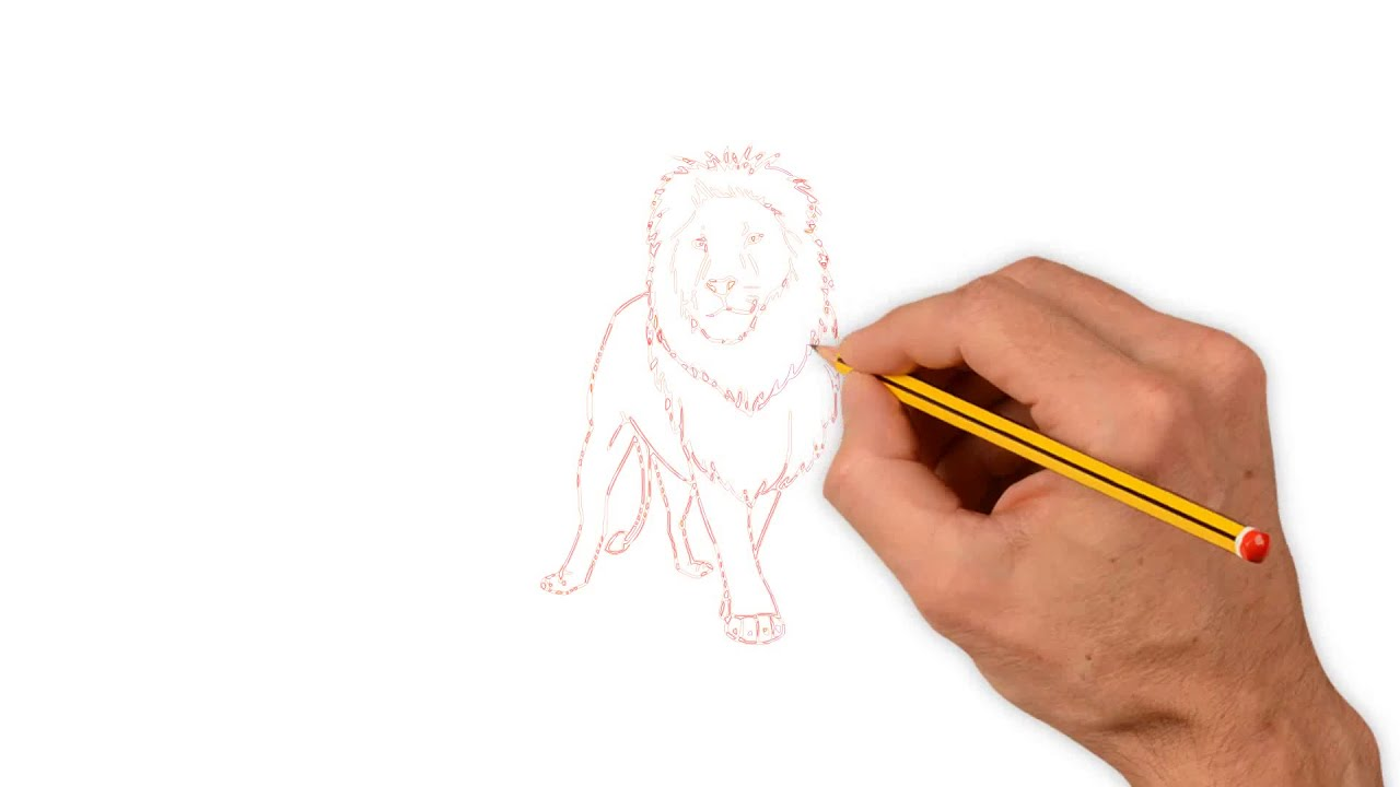 Drawing Lion Step By Step For Kids Kids Drawing Tutorial Using Pencil
