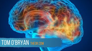 Gluten-Related Disorders and Inflammation in the Brain - Dr. Tom O'Bryan
