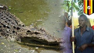 ようこそ秘境アフリカへ!妻を食べたクロコダイルに夫が復讐... 皮膚に入り込むスナノミに注意...アフリカニュースまとめ