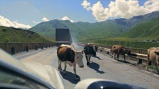 Едем в Грузию, Военно грузинская дорога, Кутаиси.