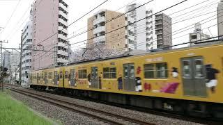 #68 【桜満開】西武新宿線を走るネタ&レア編成たち