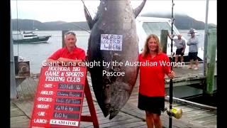 Top 10 big fish catch. Biggest catfish ever caught!!!