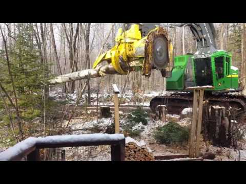 Logging Equipment In Action - Very Near The House