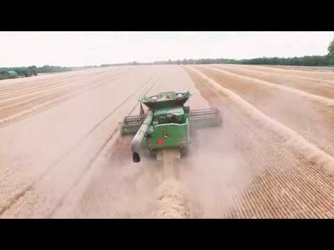 New York Agriculture