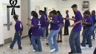 "Step / Line Dance - ""Squirrel Combo"""