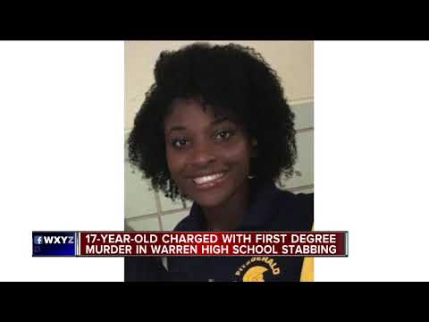Teen charged in deadly stabbing of girl at Warren Fitzgerald High School