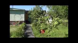 Продается комфортный теплый дом в 20 мин от СПб по Мурманскому шоссе, рядом с Ладожский канал(, 2014-07-11T06:50:16.000Z)