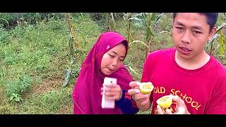 Hanifa Vlog | Main Di Kebun Jagung Belakang Rumah Seru Sekali