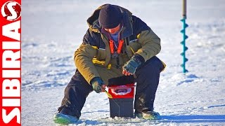 Волшебная безмотылка (чёртик) по первому льду на леща и окуня. Первый лёд на водохранилище