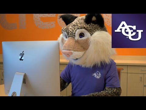 willie-the-wildcat-wants-you-to-apply-|-abilene-christian-university