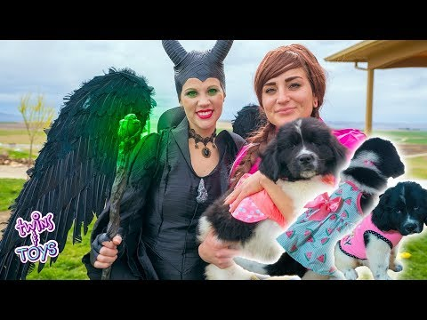 Frozen Anna and Maleficent Have a FASHION SHOW with Ducky the PUPPY!!