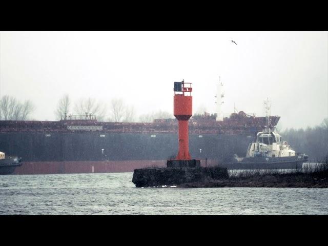Ogles tikai Krievu salā
