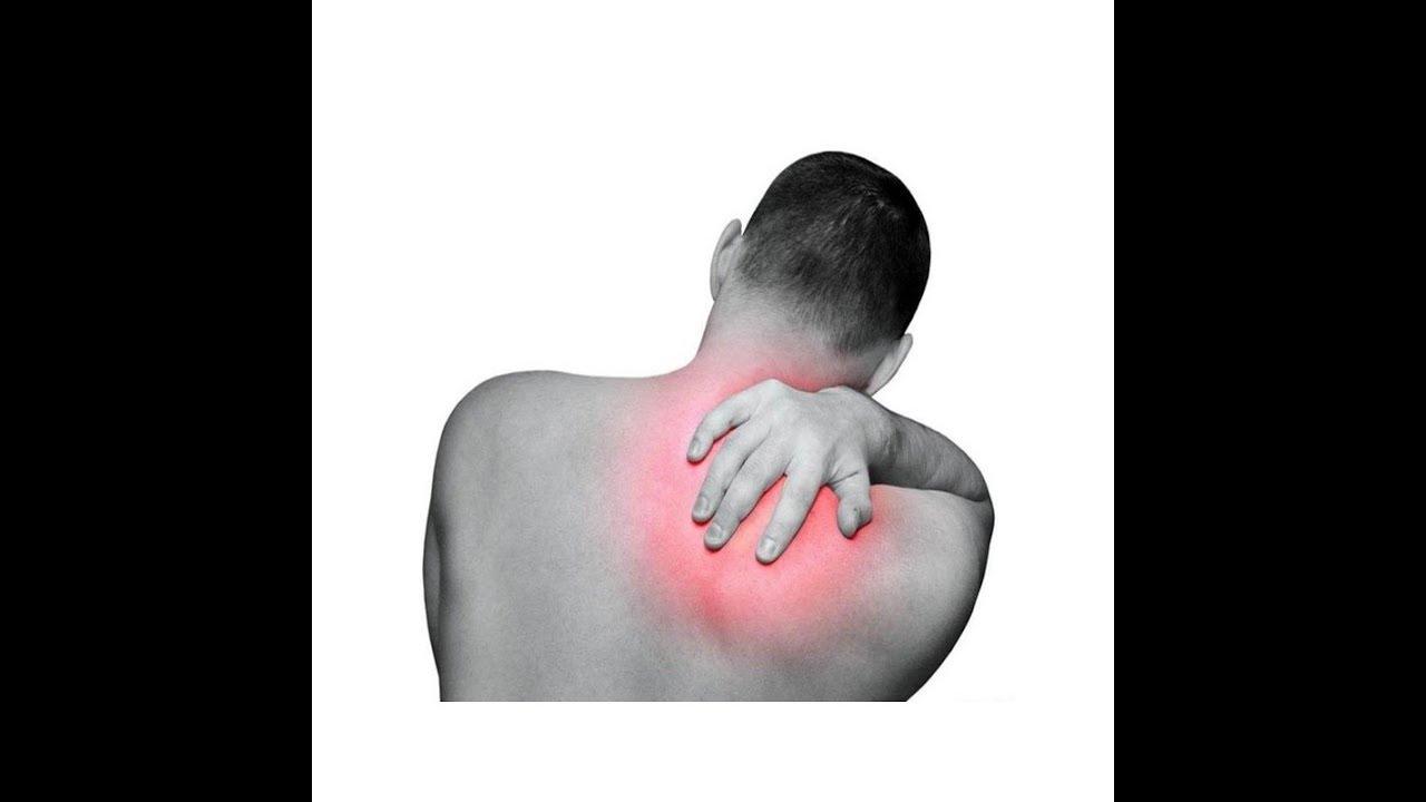 التلميذ الكورية الاختبار التهاب لوح الكتف Comertinsaat Com