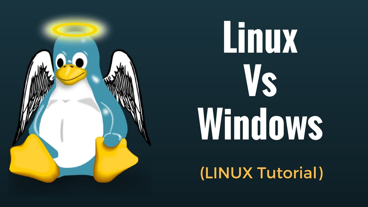 Linux vs Windows: What's the Difference?
