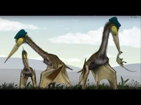 THE EVOLUTION OF FLIGHT - NOVA DOCUMENTARY - History Discovery Life (full length documentary)