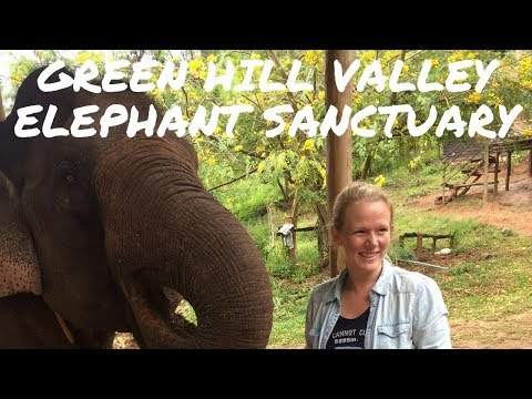 Visiting the Green Hill Valley Elephant Sanctuary in Kalaw, Myanmar