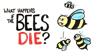 Bees Dying Out What Would Happen Extinction