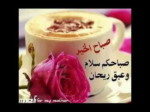 اغنية حبيبي صباح الخير حالة وتس اب Youtube