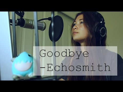 Echosmith - Goodbye (Brian Perrett Cover...