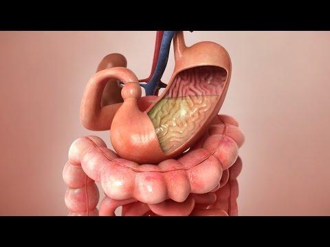 Aspirin Journey through the body - 3D Animation