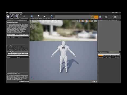 Repeat Spine Mirror Pose Fix & Basic Twist Bones - Blender + UE4