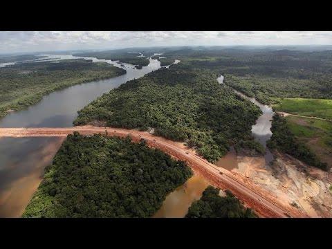China's Amazon Railway Spells Environmental Disaster