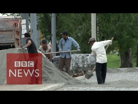 North Korean 'worker brigades' in Russia - BBC News