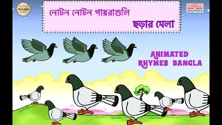 নোটন নোটন  প্যারাগুলি / Bangla Chora/ Sing Along