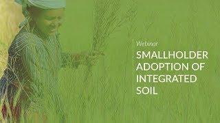 Smallholder Adoption of Integrated Soil