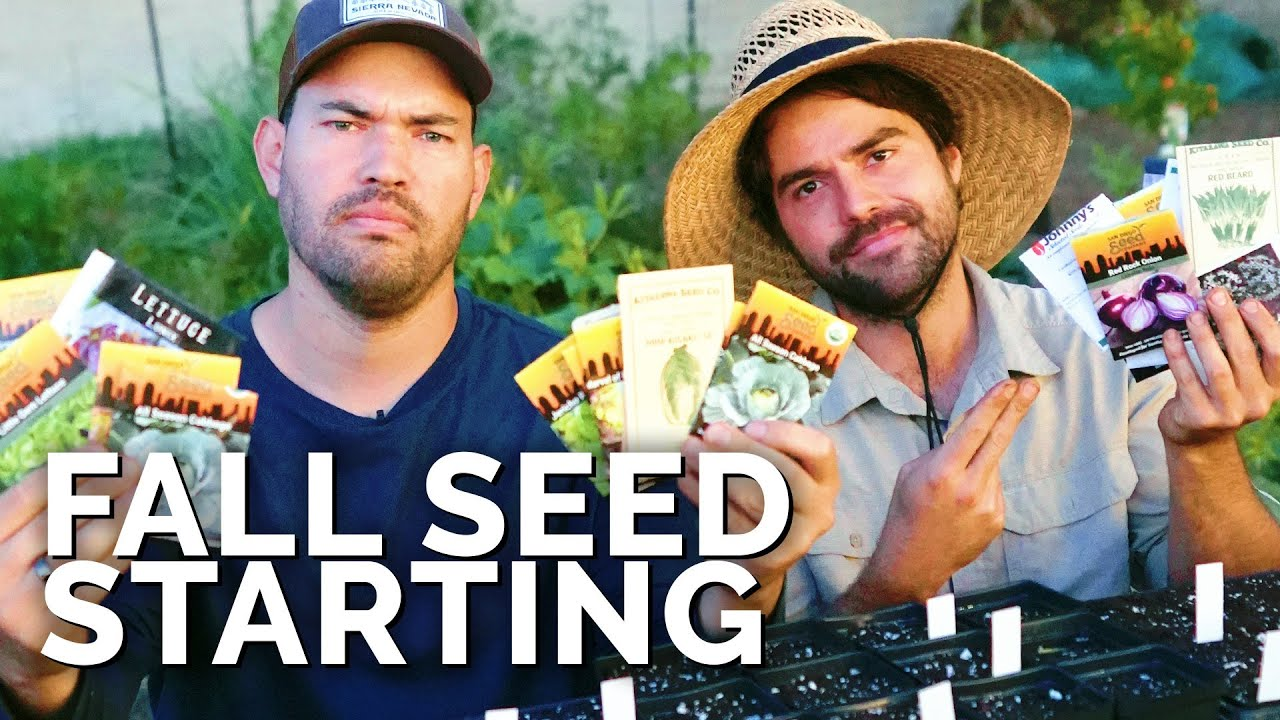 HUGE Fall Seed Starting Session (Our Favorites For Fall)