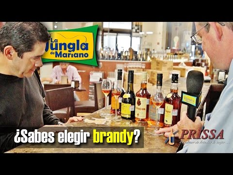 ¿Sabes Elegir Brandy?