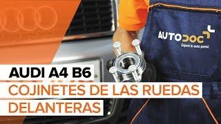 Tutoriales de reparación para los aficionados a Audi A4 b6