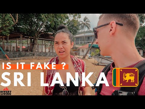 We Are Disappointed In Sri Lanka - FAKE Stilt Fisherman 🤥🇱🇰