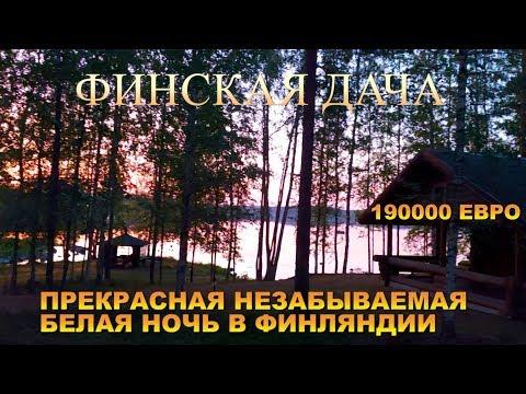 ФИНСКАЯ ДАЧА! FINLAND/ /ЧЁРНАЯ СОБАКА БРИТТА